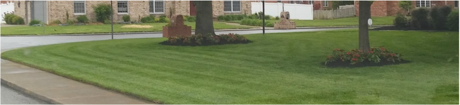 lawn mowing service Evansville